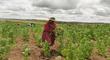 Sector agrario exige diálogo en Lima con ministros y todos los dirigentes del país