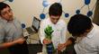 Concytec: En junio se realizará la cuarta edición de la Semana Nacional de Innovación y Tecnología