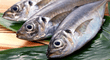 ¿Cómo saber si un pescado está en mal estado? 5 trucos para comprar pescado fresco