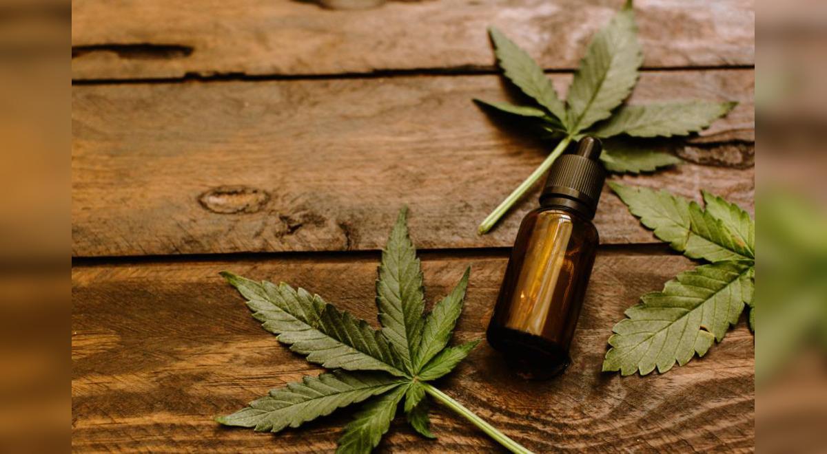 aceite-de-marihuana-sera-comercializado-desde-este-martes-en-24-farmacias-de-lima