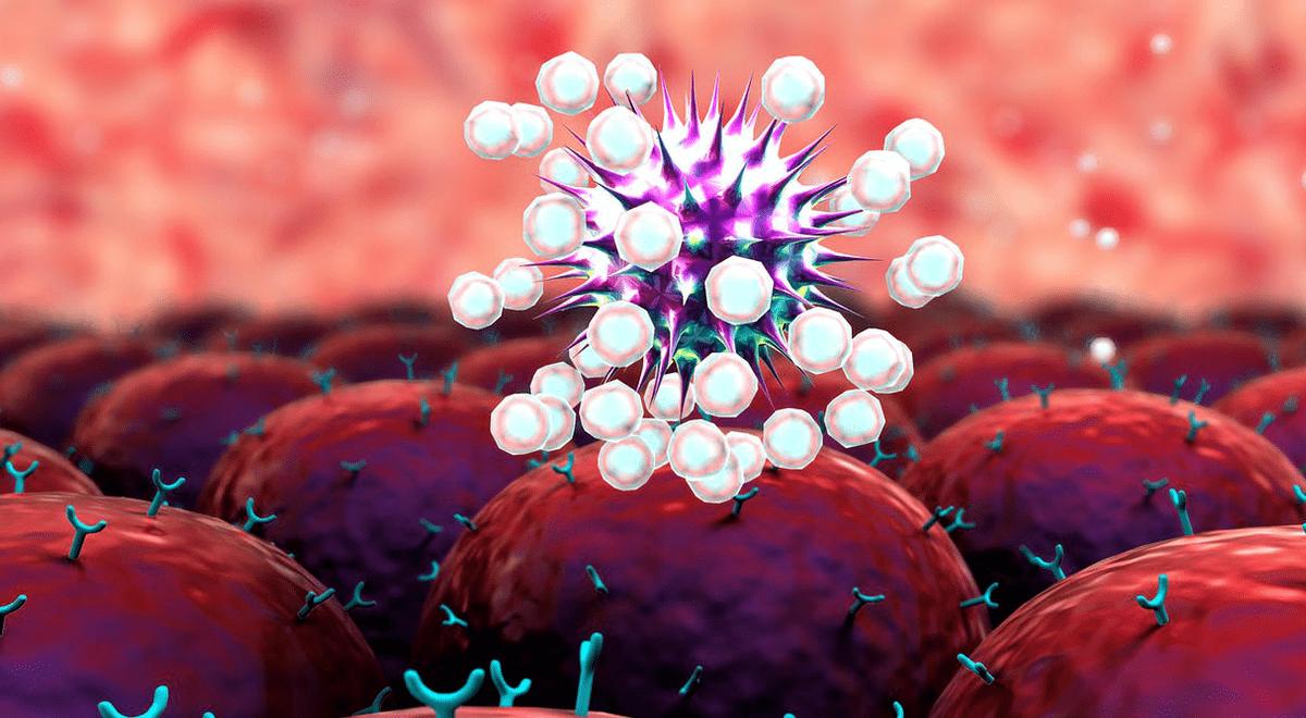 las-celulas-t-asesinas-pueden-impulsar-inmunidad-contra-variantes-del-covid-19-segun-expertos