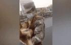 Militar rescató a perrito atropellado y veterinarias no lo quisieron atender [VIDEO]