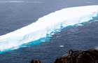 El iceberg más grande de la Tierra se desprende de la Antártida y genera preocupación [VIDEO]