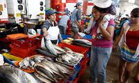 Por el Día del Pescador terminal presenta ofertas