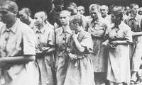 Víctimas fueron ahorcadas o degolladas por los nazis entre 1933 y 1945