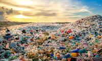 Consumimos 5 gramos de plástico  la semana
