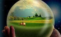 En el mundo hay 701 reservas de biosfera, situadas en 124 países