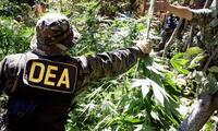 Bolivia no quiere a la DEA en su país