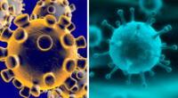 El primer caso de COVID -19 llegó a Perú y muchos confundieron este virus con la gripe.