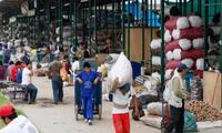 Mercado Mayorista en Santa Anita