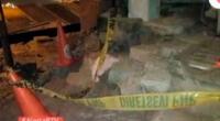 Dos perros atacan a menor de edad en Chorrillos