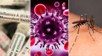 De izq. a der.: H1N1, VIH y  mosquito del dengue