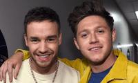 Continúan las buenas noticias para los fans de One Direction.