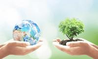 El Día de la Tierra fue establecido por el senador estadounidense Gaylord Nelson en 1970.