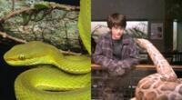 Harry Potter: Descubren especie de serpiente y la bautizan en honor a Salazar Slytherin