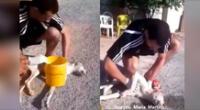 El joven logró salvar la vida del can.