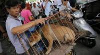 El Gobierno de China ha informado que viene elaborando nuevas leyes a fin de erradicar por completo la venta de vida silvestre.