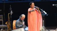 Conocidos intelectuales y cantantes salen en defensa de bahía de Paracas.