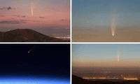 Las fotografías del cometa Neowasi en el cielo fueron compartidas por los usuarios en Twitter.
