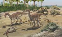 Este se extendió desde hace 251 millones de años hasta hace 201 millones de años aproximadamente.