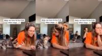 El pequeño gatito haciendo lo imposible para que su dueña deje su laptop.