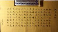 La escritura china consta de miles de símbolos, llamados caracteres, en chino hànzì, que se han utilizado durante al menos tres mil años como forma escrita de la lengua china.