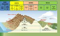 La región Chala o Costa alberga a las ecorregiones de Desierto Costero Tropical y Desierto Costero Subtropical (por debajo de los 500 m s.n.m.).