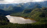 La yunga fluvial que es una zona lluviosa en la parte oriental de los Andes peruanos.