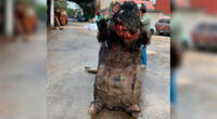 Las imágenes de un disfraz de rata gigante aterra a usuarios de Twitter.