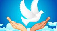 ¿Por qué se celebra el Día Internacional de la Paz?