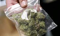 El niño traía en su mochila diversos envoltorios  de marihuana que fueron introducidos por la pareja.