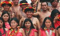 En esta región tienen gran conocimiento de la medicina folclórica y curanderismo.