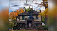Hombre construye una araña gigante por Halloween