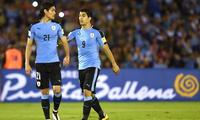 Cavani y Suárez son la preocupación de  defensa brasileña .