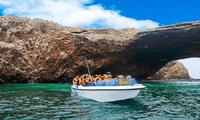 El reinicio de actividades en las Islas Ballestas contará con un nuevo protocolo de bioseguridad.