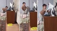 El felino trató de impedir que el bebé le quitara el objeto sobre la mesa.