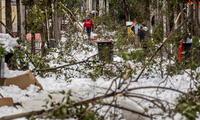 La gente camina por una calle con nieve y ramas de árboles caídos durante una fuerte nevada en el centro de Madrid, España.