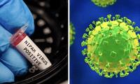 OMS calificó este virus como uno de los diez patógenos más peligrosos en términos de potencial epidémico.