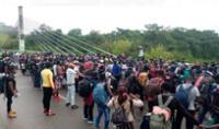 Cientos de migrantes haitianos intentan ingresar al Perú