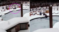 La mujer recorrió la piscina congelada para hallar a su mascota.