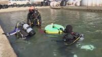 Durante los últimos siete años, Yasuo Takamatsu, de 64 años, realiza inmersiones cada semana.