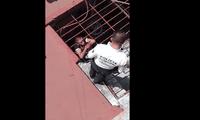 Ladrón atrapado