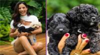 María Pía se muestra feliz por los nuevos integrantes de su familia.