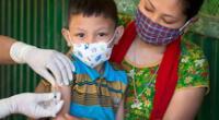 Cobertura de vacunación cayó un 25%.