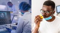 Francia: Estudio revela el factor que provoca la pérdida del olfato en personas con COVID-19.