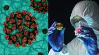 EE. UU.: descubren un tratamiento con anticuerpos que podría acabar con las variantes del coronavirus