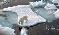 Hace unos días la comunidad científica observaba el desprendimiento de un iceberg llamado A-76 de la Antártida.