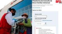 Bono Familiar Universal, 2021: Consulta AQUÍ si accedes al subsidio económico