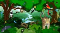 Hay muchos animales que tienen su hábitat en las selvas tropicales.