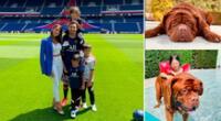 Lionel y Antonela pasan tiempo en Barcelona, mientras el debut en PSG se alarga.